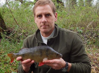 One of a cracking Perch brace