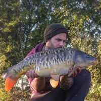 Scattered scaled mirror
