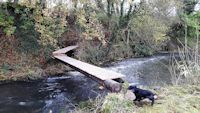 Bridging the Trout Stream